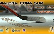 Hockey Promo Playoffs COPA SUR